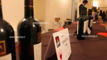 """Lamezia, aperto il Lamezia Wine Fest: """"Non si alza più un calice solo per bere ma per degustare"""""""