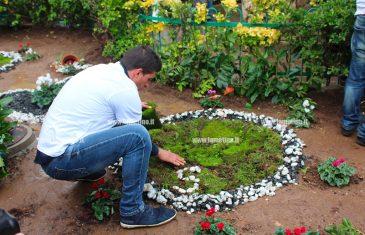 """Tre alberi in memoria di Stefania, Christian e Nicolò: """"Facciamo rumore con il cuore"""""""